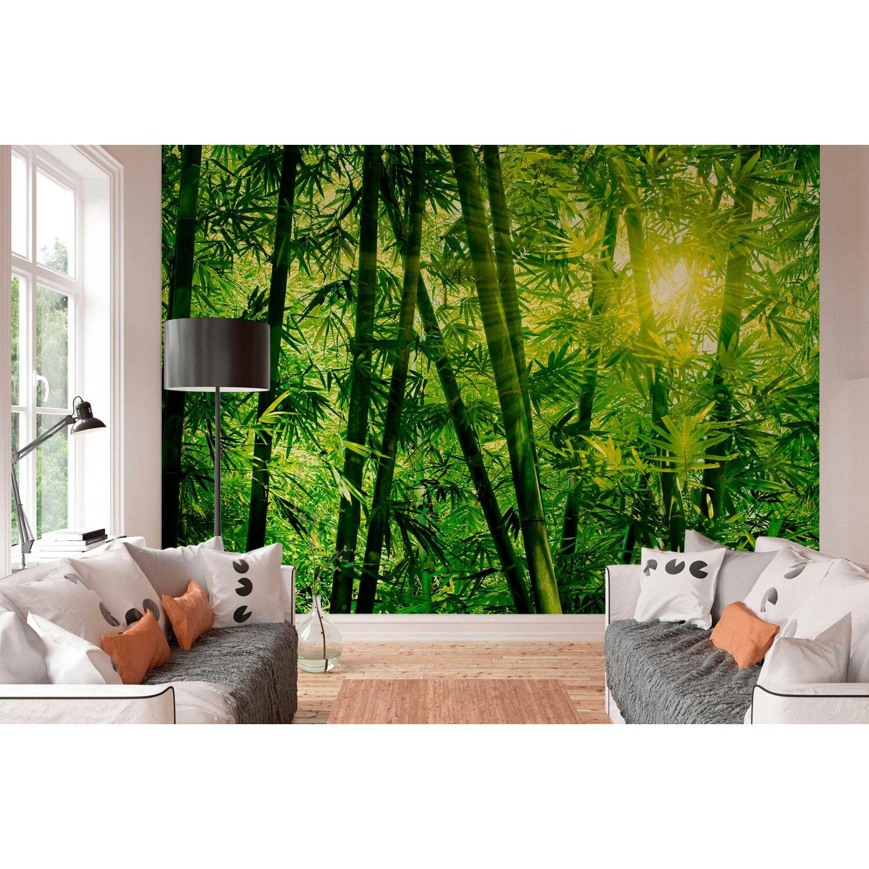 fototapete bambus wald 366 cm x 254 cm kaufen bei obi. Black Bedroom Furniture Sets. Home Design Ideas