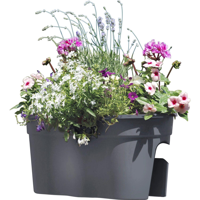 Khw Balkon Flowerclip Xl 2er Set Anthrazit Kaufen Bei Obi