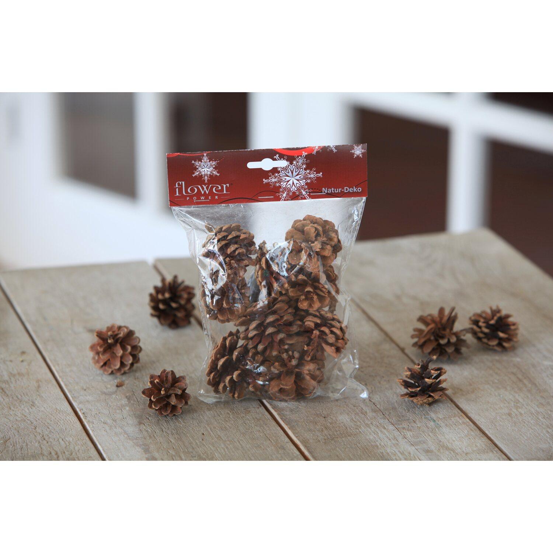 Knauber Weihnachtsdeko.Tannenzapfen Natur 9 Stück Kaufen Bei Obi
