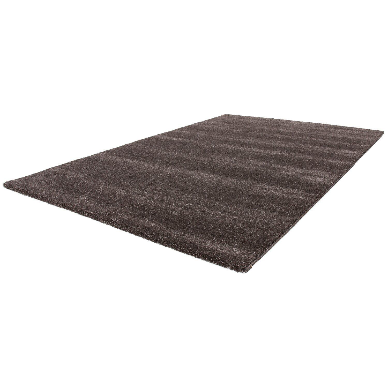 Teppich Moe 1020 Braun 60 cm x 110 cm