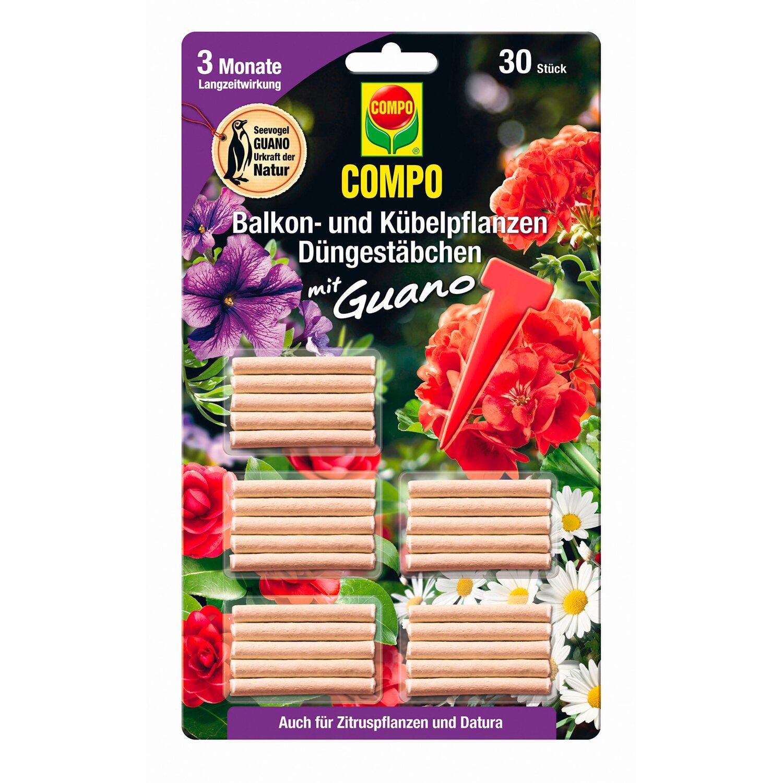Compo Düngestäbchen für Balkon- und Kübelpflanzen mit Guano 30 Stäbchen