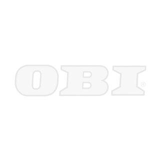 Beliebt Gurtführung Duo Mini LR+Zugluftdichtung 14 mm kaufen bei OBI MF59