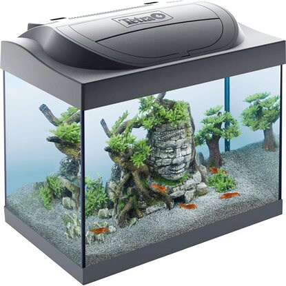Tetra Aquarium-Set Starter Line LED 30 l Anthrazit