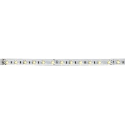 Paulmann LED-Strip MaxLED Tunable White 1 m Tunable White EEK: A-A++