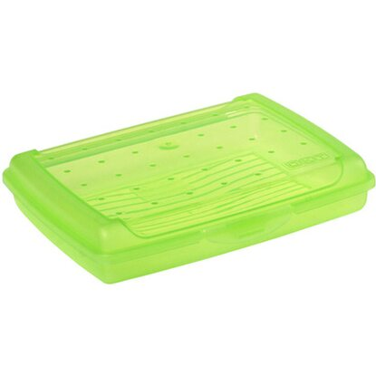 Click-Box Mini 17 cm x 13 cm x 3,5 cm Fresh-Green