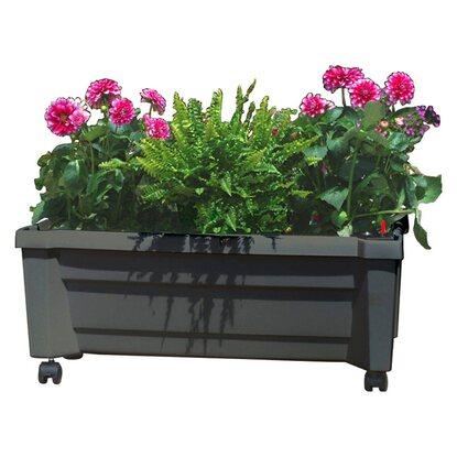 khw pflanzkasten calypso mit bew sserungssystem anthrazit kaufen bei obi. Black Bedroom Furniture Sets. Home Design Ideas