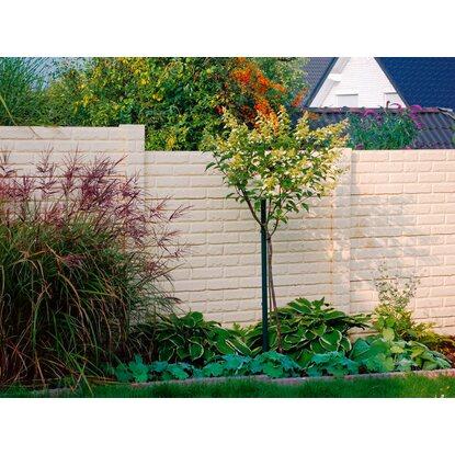 Betonzaun platte klassik stein 144 cm x 30 cm x 4 5 cm - Zaunelemente obi ...