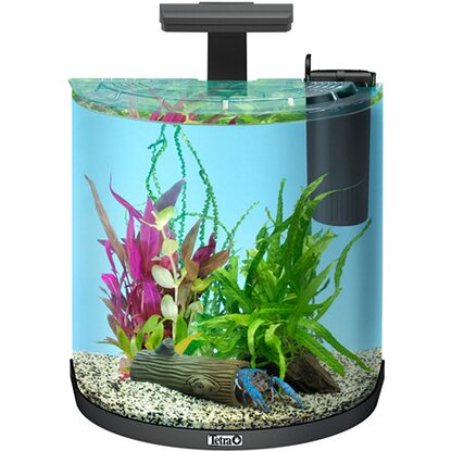 Tetra Aquarium-Set AquaArt II Explorer Line Crayfish LED 30 l Anthrazit
