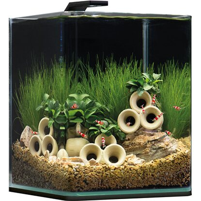 dennerle mini aquarium nano cube complete 10 l kaufen bei obi. Black Bedroom Furniture Sets. Home Design Ideas