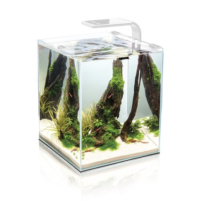 AquaEl Aquarium Shrimp Set Smart 2 LED Weiß 10 l