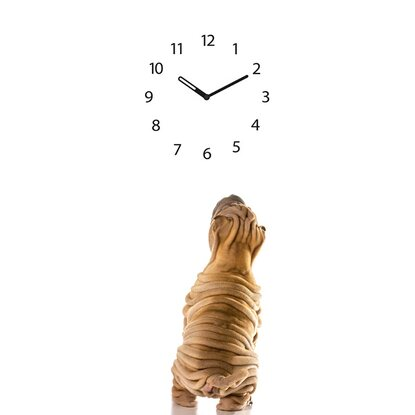 Eurographics Wanduhr Time Art Dog Clock 20 cm x 60 cm