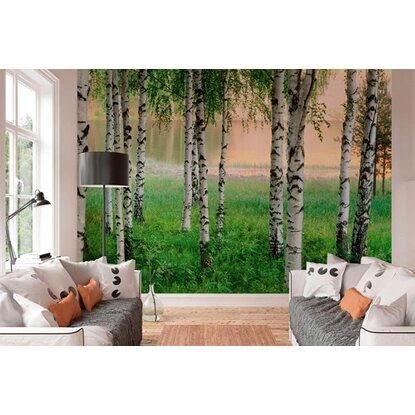fototapete nordischer wald 366 cm x 254 cm kaufen bei obi. Black Bedroom Furniture Sets. Home Design Ideas