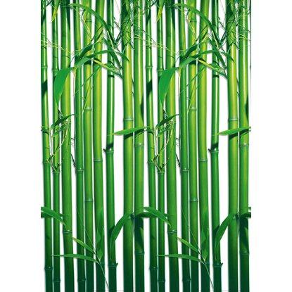 fototapete bambus 183 cm x 254 cm kaufen bei obi. Black Bedroom Furniture Sets. Home Design Ideas