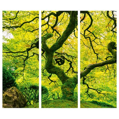 Eurographics Deco Panel Japanese Marple Tree 93 cm x 81 cm