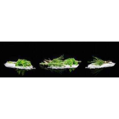 Kuchenruckwand 60 Cm X 200 Cm Alu Dibond Black Mirror Herbs Ii