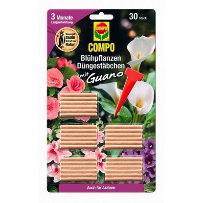 compo d ngest bchen f r bl hpflanzen mit guano 30 st bchen kaufen bei obi. Black Bedroom Furniture Sets. Home Design Ideas