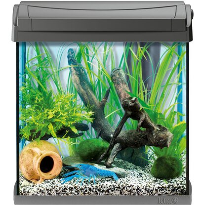 Tetra Aquarium-Set AquaArt II Discovery Line Crayfish 30 l Anthrazit
