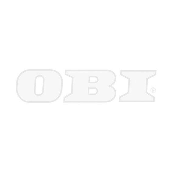 hummi erdbeere waldfee topf ca 9 cm fragaria vesca kaufen bei obi. Black Bedroom Furniture Sets. Home Design Ideas