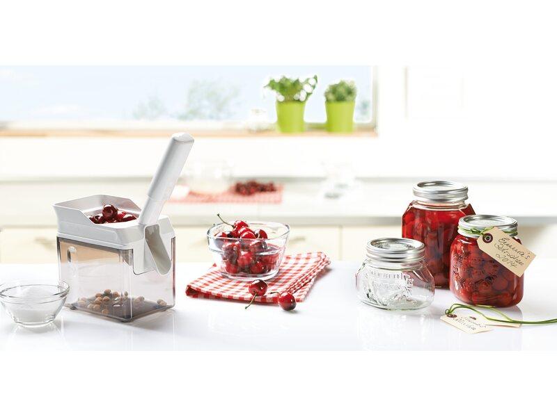Leifheit Kirschentkerner Cherrymat Grün kaufen bei OBI