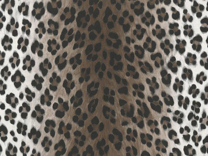 a s creation papiertapete dekora natur leopard wei. Black Bedroom Furniture Sets. Home Design Ideas