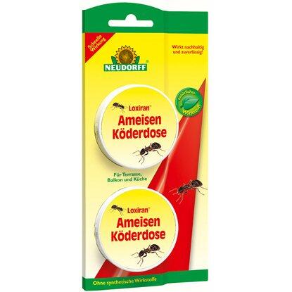 Neudorff Loxiran Ameisen-Köderdose kaufen bei OBI