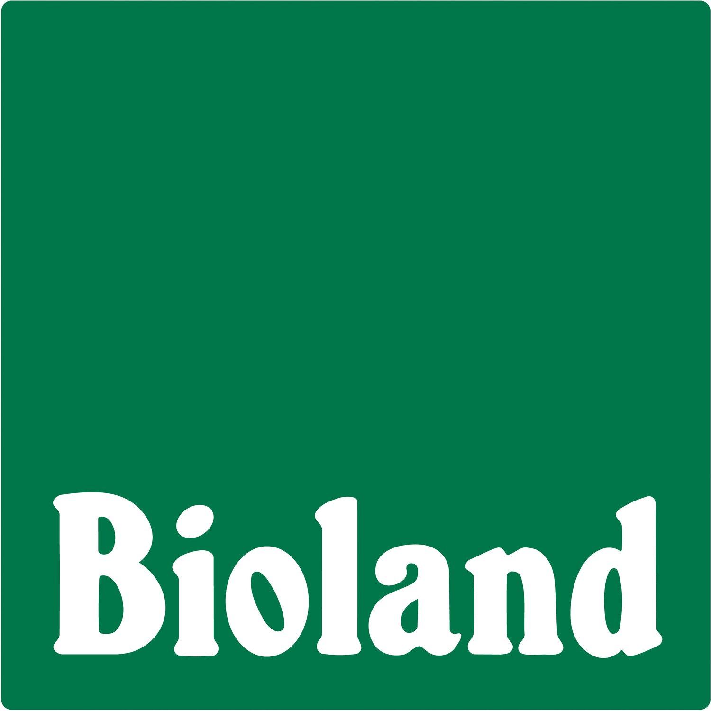 blu bio prickelkn pfe topf ca 12 cm spilanthes kaufen bei obi. Black Bedroom Furniture Sets. Home Design Ideas