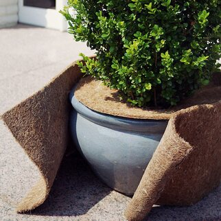 Videx Garden Winterschutz Kokosmatte Natur 50 Cm X 150 Cm Kaufen Bei Obi